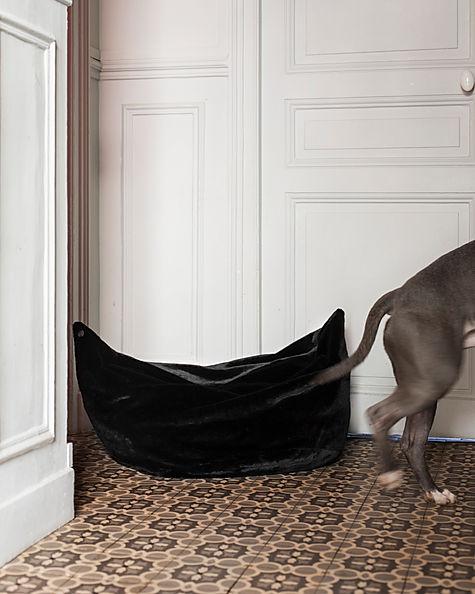 Panier pour chien de la marque Chien-Chien. Déhoussable et lavable en machine.