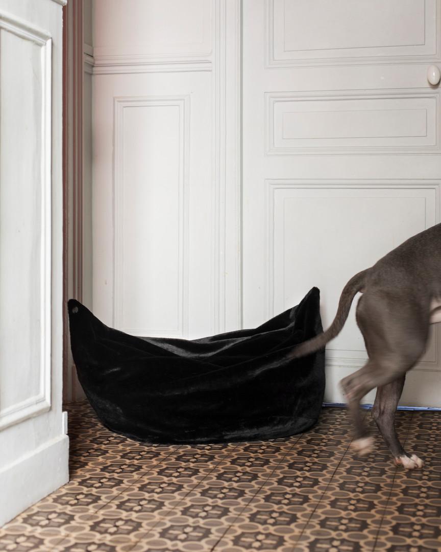 lookbook-paniers-chien-chien-2.jpg