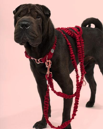 lookbook-jewel-chien-chien-5.jpg