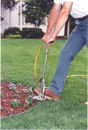 deep root fertilizing2.jpg