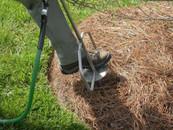 deep root fertilizing3.jpg