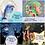 Thumbnail: 4 CD 24 Traumreisen für Kinder & Familie
