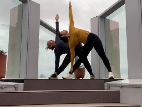 Yoga-Set von 14 Video-Lektionen