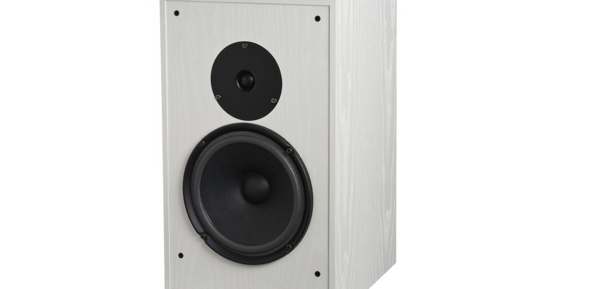 _AX-2-speaker-white front-side1.jpg