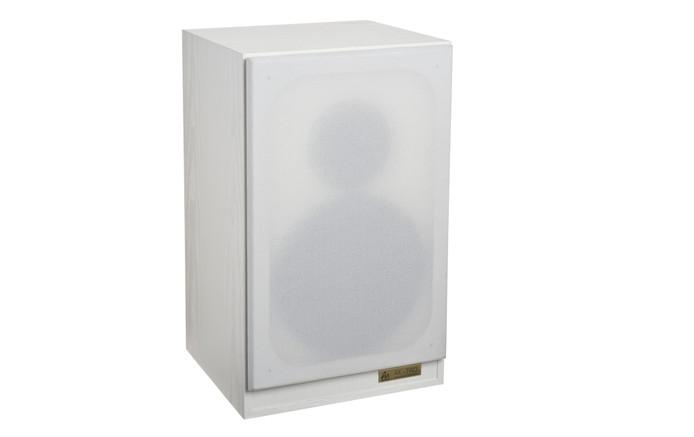 _AX-2-speaker-white grille on 2.jpg