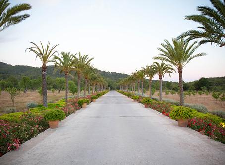 Hidden gem´s in Mallorca