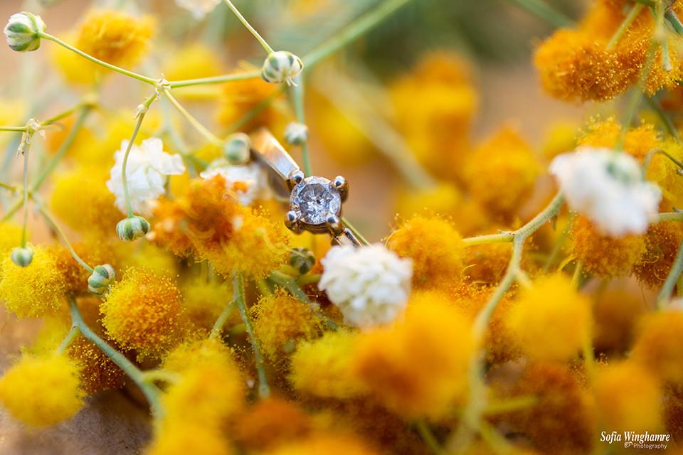 Mallorca wedding photographer, lose up photo of the wedding ring