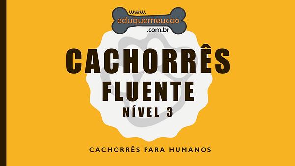 Cachorrês_Fluente.PNG
