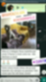 Screenshot_20200512-130338_Instagram.jpg