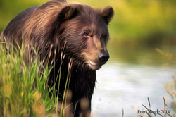 Grizzly Bear as Art