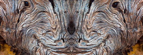 Wood Face