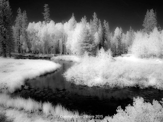 IR Creek