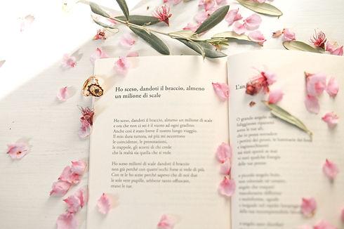 book-0007.jpg