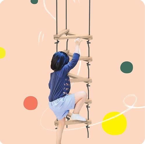 Triangular Ladder
