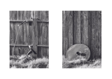 Diptych American West, 2020