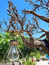 Bespoke Metal Olive Tree Sculpture