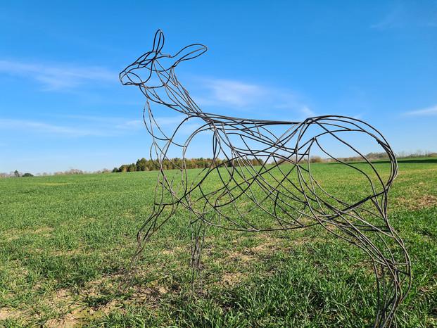 Sculpture on the Horizon