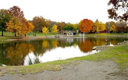 Rings Pond.jpg