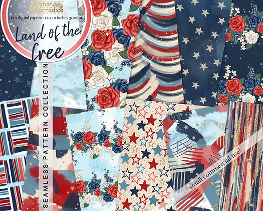 Land of the Free - 4th of July abstract and floral seamless pattern coll