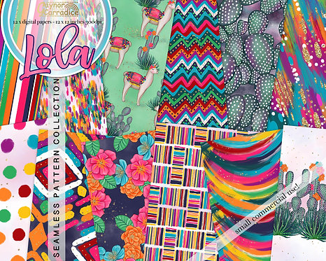 Lola - Mexican abstract and floral seamless pattern collection