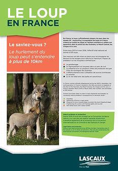 Wolf Panel 3.jpg