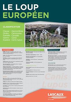 Wolf Panel 2.jpg