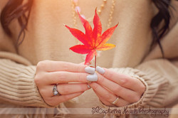 fall leaves highschool senior photos knoxville photography