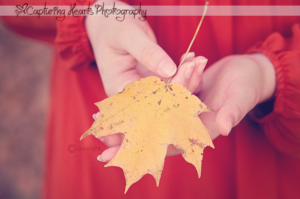 Fall+Leaf+in+Hands+Copyright