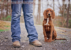 Redbone+Coonhound+Man+and+his+do+hunting+boots+red+dog+boy+and+his+dog