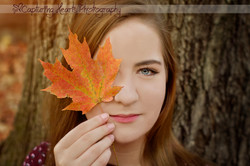knoxville fall leaves senior photography
