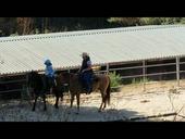 Lesson on Pony