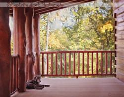 Dog+Front+Porch+Log+Cabin+Woods