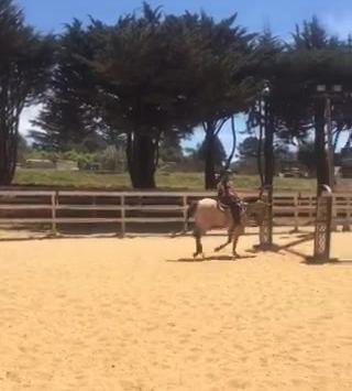 Jump Striding