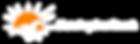MSR Logo White Horiz-02.png