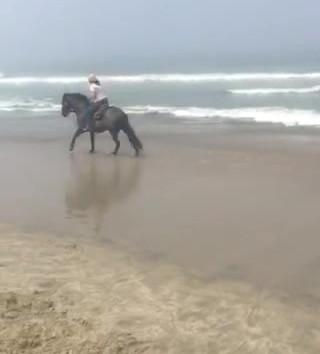 Beach Lope