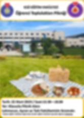 Piknik4.jpg