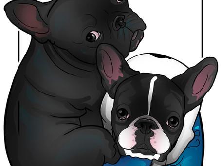 Caricatura Online Pet
