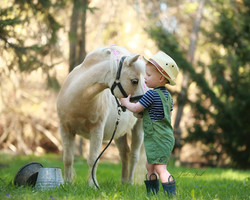 Boy-and-his-horse