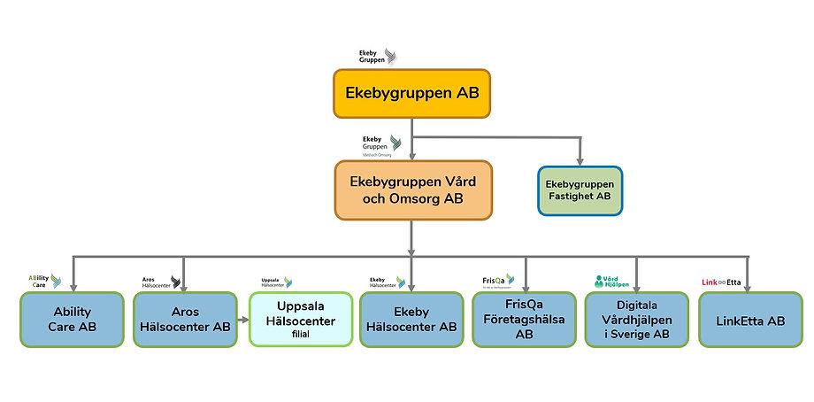 Org schema bild 210311.jpg