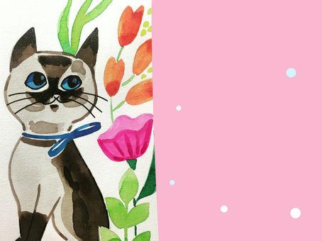 Désormais une section Illustration chez Princesse Wally !