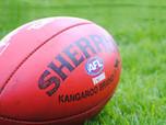Landmark insurance payout awarded to former AFL player Shaun Smith