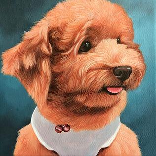 Pet Portrait Acrylic Painting Poodle Bro