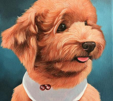 Pet Portrait Oil Painting (Peek-A-Boo Style)