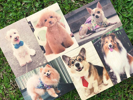 Photo on wood group photo.jpg