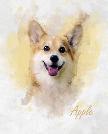 corgi watercolour minimise.jpg