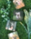 4 Mini Samples.jpg