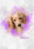 dachshund watercolour minimise.jpg