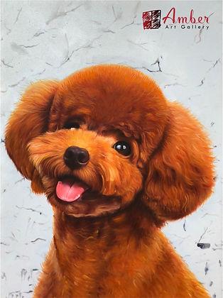 Amber Art Gallery Pet Portrait  - PoodleOil Paintings