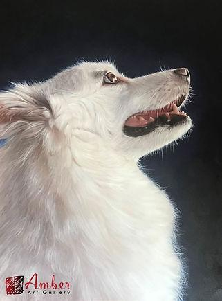 Amber Art Gallery Pet Portrait - Japanese Spitz Oil Paintings
