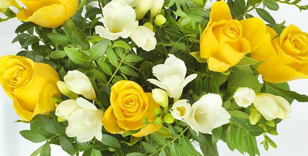 Sunshine scented freesia and roses